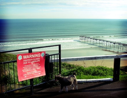 Saltburn lines of love